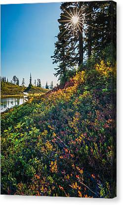 Huckleberry Afternoon Canvas Print by Gene Garnace