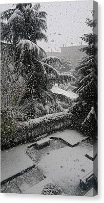 Huge Snowflakes Canvas Print by Giuseppe Epifani