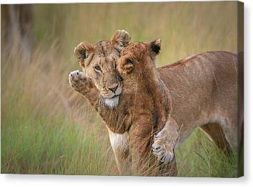 Caring Mother Canvas Print - Hugs by Jeffrey C. Sink