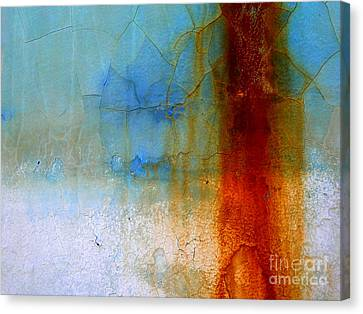 Hull Textures Canvas Print