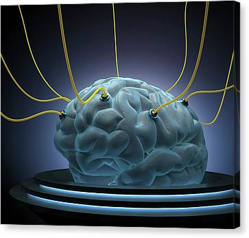 Human Brain With Sensors Canvas Print