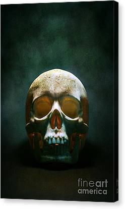 Creepy Canvas Print - Human Skull by Carlos Caetano