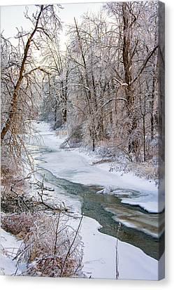 Humber River Winter Canvas Print by Steve Harrington
