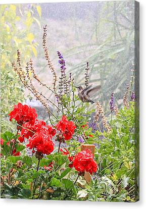Hummer Shower Canvas Print