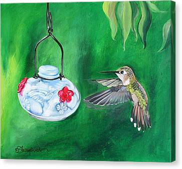 Hummingbird And The Feeder Canvas Print by Shelley Overton