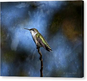 Canvas Print featuring the digital art Hummingbird Beauty by J Larry Walker