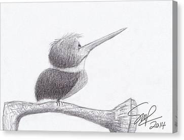 Hummingbird Bulldog Canvas Print by Steven Powers SMP