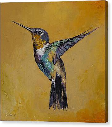 Humming Birds Canvas Print - Hummingbird by Michael Creese