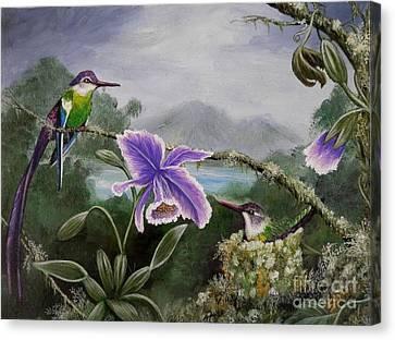 Passiflora Canvas Print - Hummingbird Paradise by Amanda Hukill
