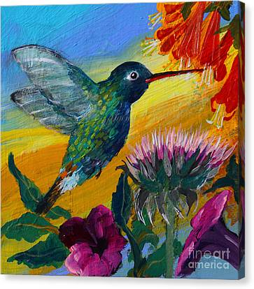 Hummingbird Canvas Print by Robin Maria Pedrero