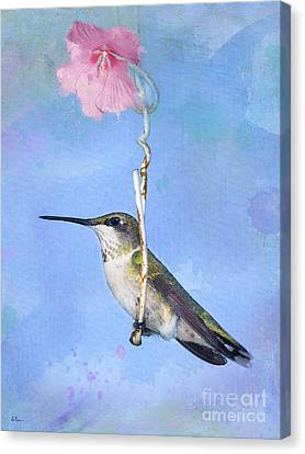 Hummingbirds Like To Swing Canvas Print by Betty LaRue