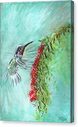 Hummingbird Bird Canvas Print by Remy Francis