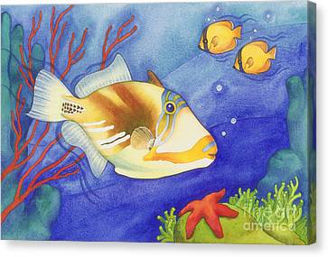 Humu Picasso Triggerfish Canvas Print
