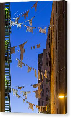 Hung Out To Dry 1 Canvas Print by Scott Campbell
