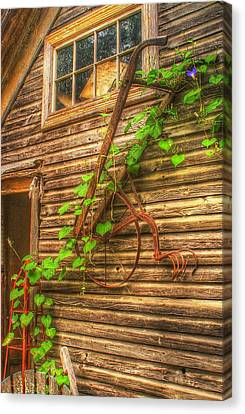 Hung To Rest Canvas Print by Randy Pollard