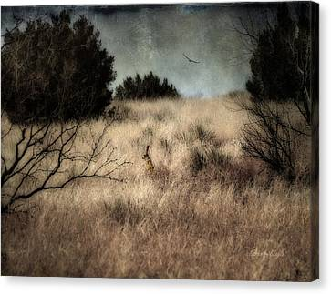 Canvas Print featuring the photograph Hunter And The Hunted by Karen Slagle