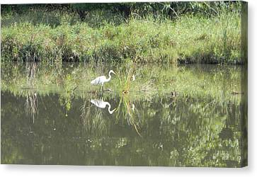 Hunter Reflected 1 Canvas Print by Mark Minier