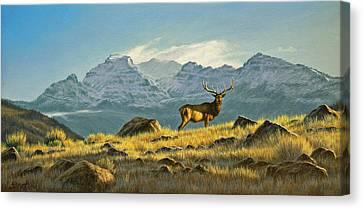 Hunter's Dream - Elk Canvas Print by Paul Krapf