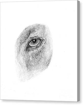 Hunter's Eye Canvas Print