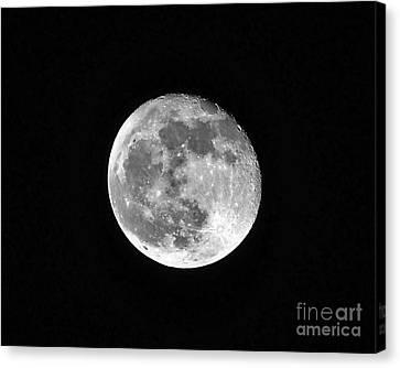 Hunters Moon Canvas Print by Al Powell Photography USA