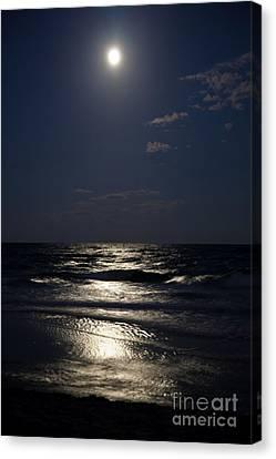 Hunter's Moon Iv Canvas Print