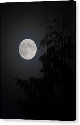 Hunters Moon Canvas Print by Randy Hall