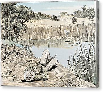Hunting A Hippopotamus In South Africa Canvas Print by South African School
