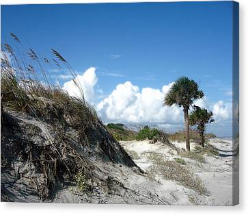 Hunting Island - 9 Canvas Print by Ellen Tully