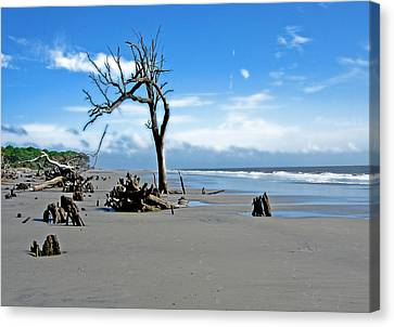 Canvas Print featuring the photograph Hunting Island - 1 by Ellen Tully