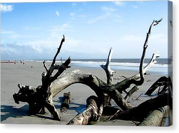 Canvas Print featuring the photograph Hunting Island - 2 by Ellen Tully