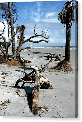 Canvas Print featuring the photograph Hunting Island - 3 by Ellen Tully