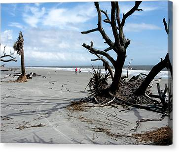 Canvas Print featuring the photograph Hunting Island - 5 by Ellen Tully
