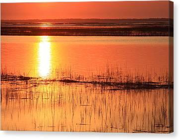Hunting Island Tidal Marsh Canvas Print by Michael Weeks