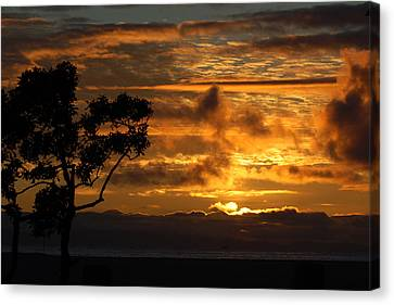 Huntington Beach Sunset Canvas Print by Matt Harang