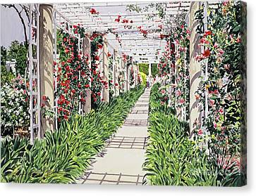 Agapanthus Canvas Print - Huntington Rose Arbor by David Lloyd Glover