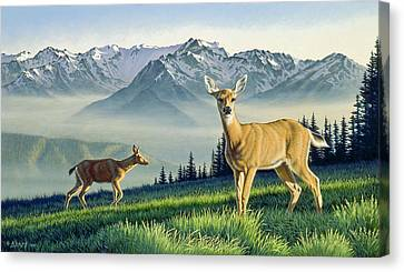 Hurricane Ridge-blacktails Canvas Print by Paul Krapf