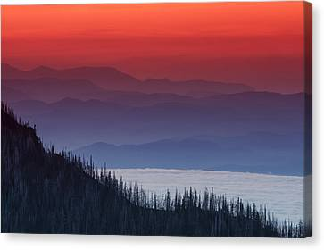 Olympic National Park Canvas Print - Hurricane Ridge Sunset by Mark Kiver