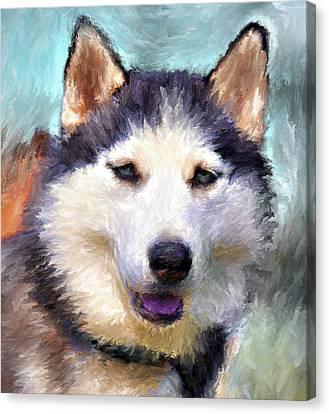 Husky Canvas Print - Huskies by Yury Malkov