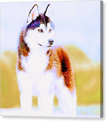 Husky Canvas Print - Husky Dog 3 by Yury Malkov