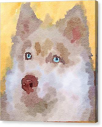 Husky Dog 4 Canvas Print by Yury Malkov