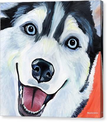 Husky Canvas Print by Melissa Smith