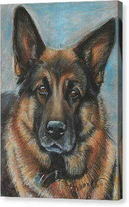 Hussler-german Shepherd Dog Canvas Print by Sciandra