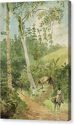 Hut In The Jungle Circa 1816 Canvas Print