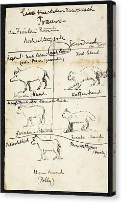 Huxley On Charles Darwin's Dog Canvas Print by British Library