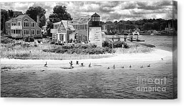 D700 Canvas Print - Hyannis Light Migrating Geese Bw by Jack Torcello