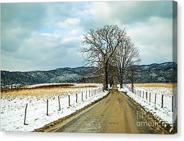 Hyatt Lane In Snow Canvas Print by Debbie Green