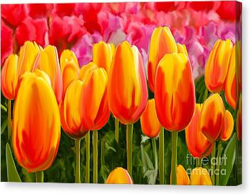 Canvas Print featuring the painting Hybrid Tulips by Tim Gilliland