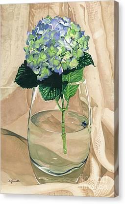 Hydrangea Blossom Canvas Print