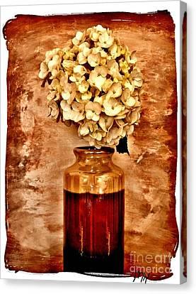 Hydrangea In A Vase Canvas Print by Marsha Heiken