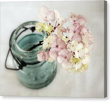 Canvas Print featuring the photograph Hydrangea In Vintage Robin's Egg Jar by Brooke T Ryan